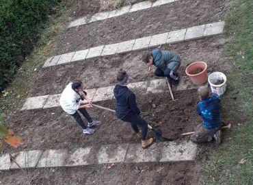 Der Schulgarten wird winterfest