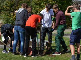 Realschüler pflanzen neuen Schulbaum